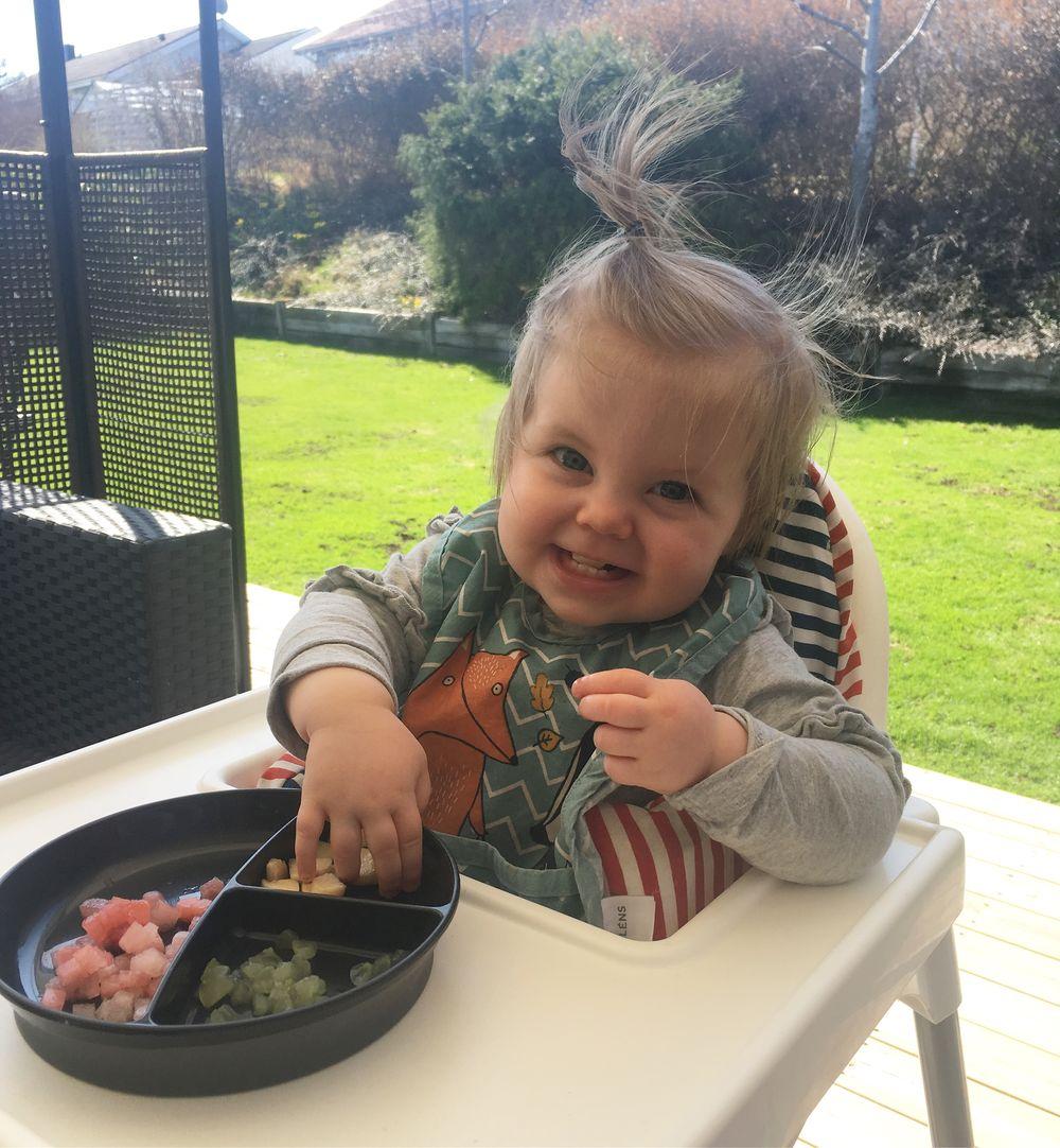 Svensexa middagar i Sverige webmätningsprogram